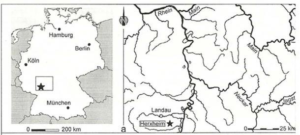 Map of the Herxheim site.
