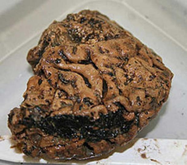 Heslington Brain, discovered to be more than 2,500 years old.
