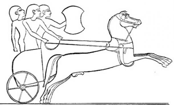 Hittite chariot, from an Egyptian relief.
