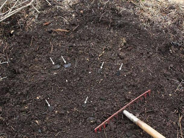 Homemade terra preta: wood charcoal composted together with yard waste, kitchen slops and soil. The charcoal pieces do not decay during fermentation and can be found in the compost when it is done (white arrows). (Holger Casselmann/CC BY SA 3.0)