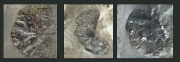 Hominin images, left - right: Figures 2(a), 2(b), and 2(c) – Lucianna. (Author provided)