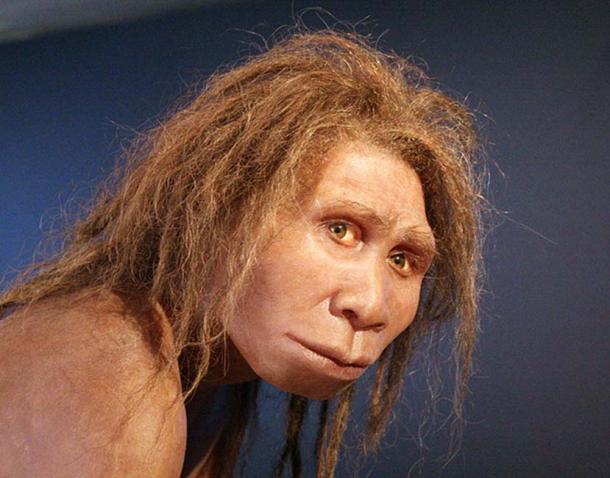 Homo Georgicus. (120 / CC BY-SA 3.0)