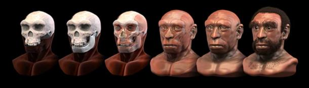 Homo heidelbergensis - earlier forensic facial reconstruction/approximation (Cicero Moraes, 2013). (CC BY-SA 4.0)