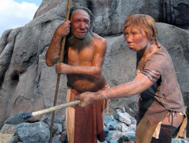 Male and female Homo neanderthalensis in the Neandertal-Museum, Neandertal, Düsseldorf, Germany.