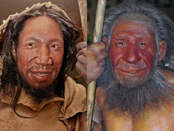 Homo sapiens, on left, and Homo neanderthalensis, on right. It is believed the stone tools were made by Homo sapiens. (The Nature Box / CC BY-SA 4.0)