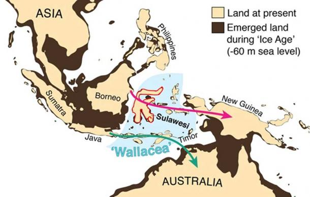 How our region looked during the Ice Age. Lower sea levels bridged the ocean barrier now separating Australia from New Guinea and joined up numerous islands in Southeast Asia to each other and to the adjacent mainland, with the exception of islands in Wallacea, which have always remained separate. The arrows show how the ancestors of Aboriginal people may have got to Australia up to 65,000 years ago. Adam Brumm, Author provided