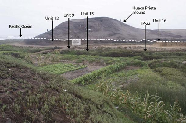 Huaca Prieta mound situated on the Sangamon Terrace (buried terrace surface with Late Pleistocene and Early Holocene cultural deposits is indicated by dotted line below the mound).