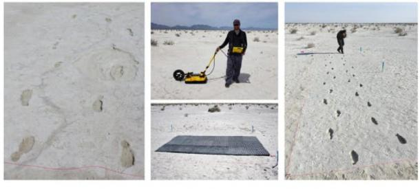 Human footprints from the last Ice Age at White Sands National Monument in New Mexico. Matthew Robert Bennett, Author provided