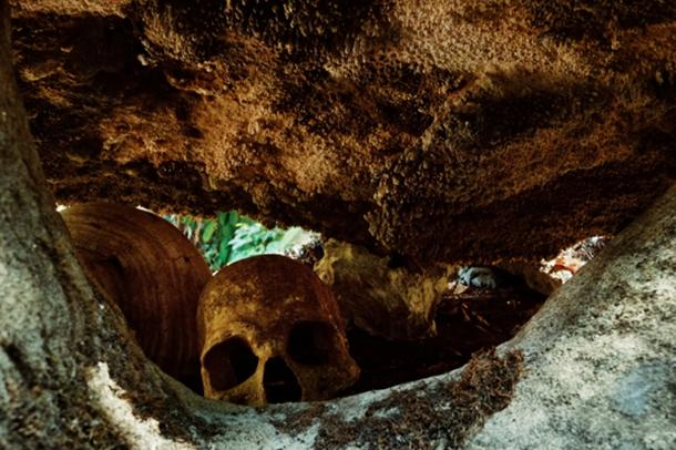 Human remains bones were found along with the skull cups at the site. (simanlaci / Adobe)