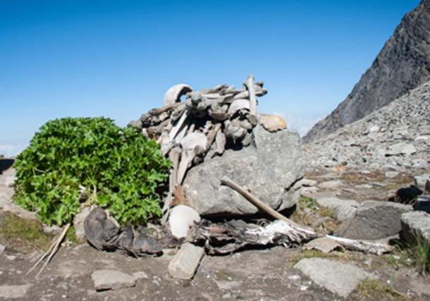 Human skeletons in Roopkund Lake also known as Death Lake. (Schwiki / CC BY-SA 4.0)