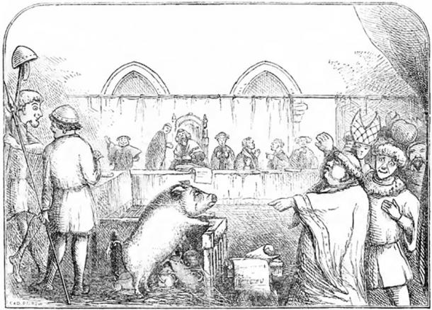 Illustration depicting a sow and her piglets being tried for the murder of a child. The trial allegedly took place in 1457, the mother being found guilty and the piglets acquitted. (InverseHypercube / Public Domain)