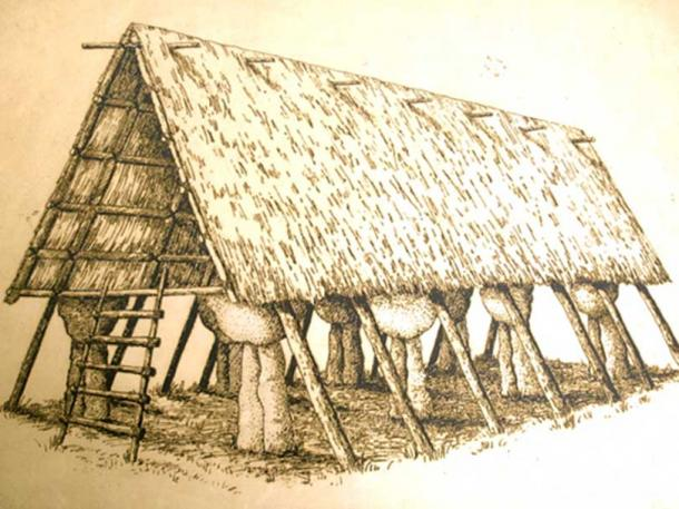 Illustration of House of Taga (Public Domain)