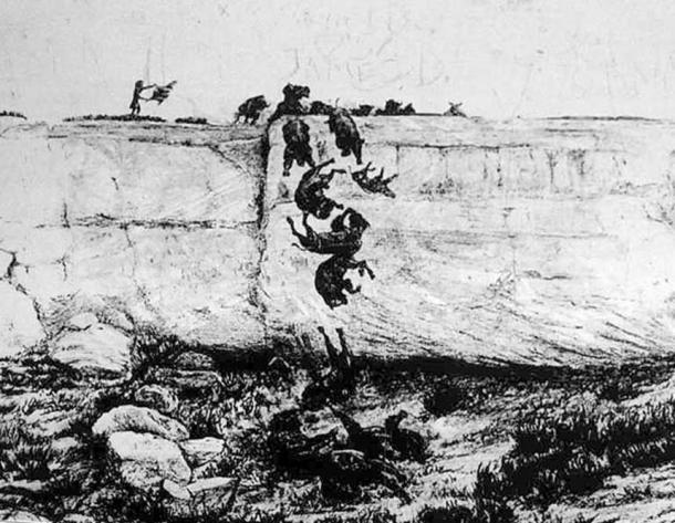 Illustration of a buffalo jump (Public Domain)