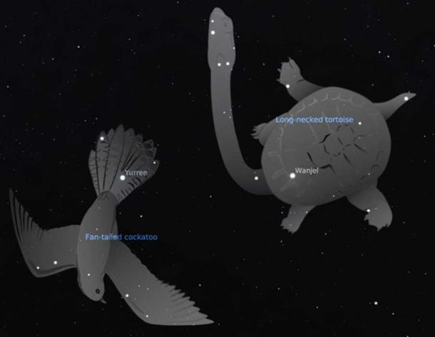 In Wergaia traditions the brothers take the form of animals: Yurree (Castor), the fan-tailed cuckoo, and Wanjel (Pollux), the long-necked tortoise. Stellarium, John Morieson and Alex Cherney