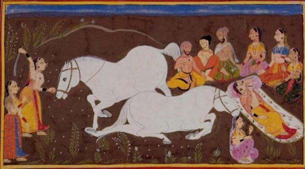 In the Indian horse-sacrifice, ashvamedha, the horse represents the sun which has been lost and must be recovered