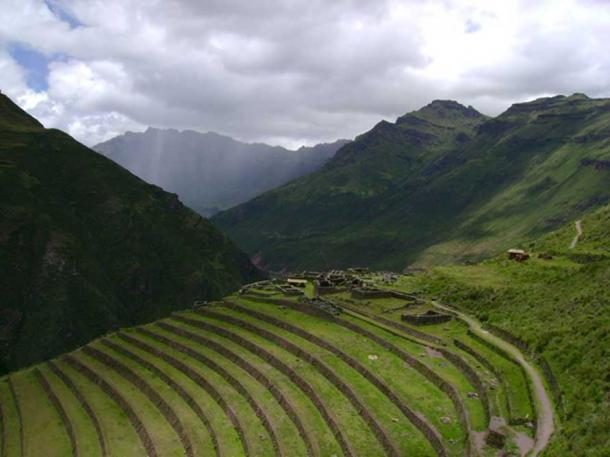 Inca terraces at P'isaq. (Public Domain)