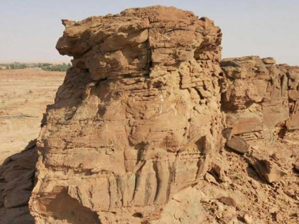 Incomplete sculpture of two dromedaries in single file on Spur C at Camel Site, Al Jawf, Saudi Arabia CNRS / MADAJ / R. Schwerdtner