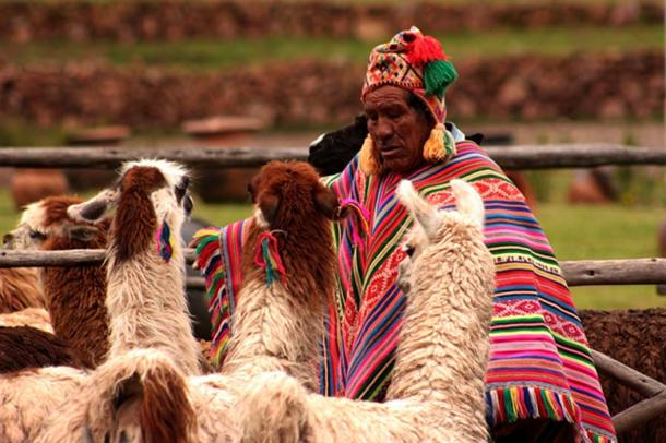 Indigenous Peruvian man. (FredWanderley / Public Domain)