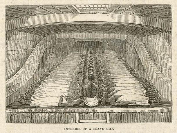 Interior of a Slave Ship (Archivist / Adobe Stock)