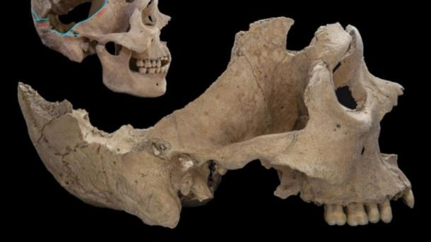 Isotope analysis of tooth enamel revealed where the victims potentially came from. (© Nicolaus Seefeld)