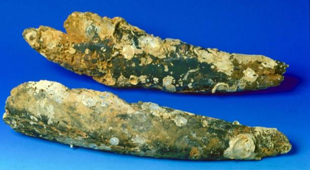 Ivory tusks found at the wreck were radio carbon dated. (The Field Museum)