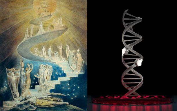 "'Jacob's Dream (1805) by William Blake (left). It is probably just coincidence, but in this representation the ""ladder"" appears similar in shape to one side of the DNA double helix (right)."