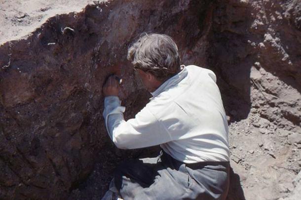 James Mellaart excavating a mural in Çatalhöyük