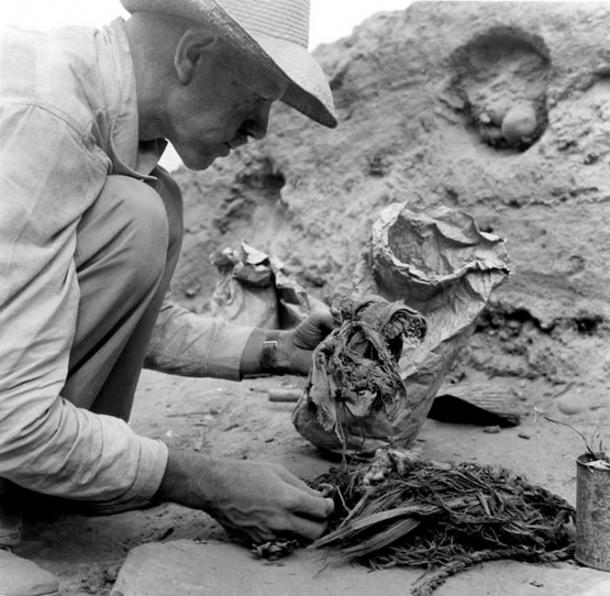 Junius Bird examining textile, botanical, and cordage specimens at Huaca Prieta, 1946-1947. Photo by John Collier.