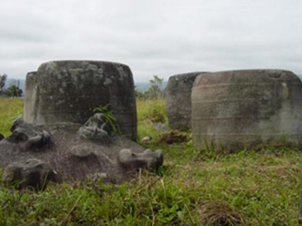 Kalambas in the Bada Valley.