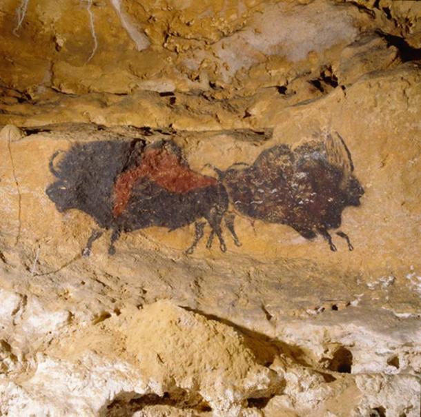 Lascaux Cave Art: Bison