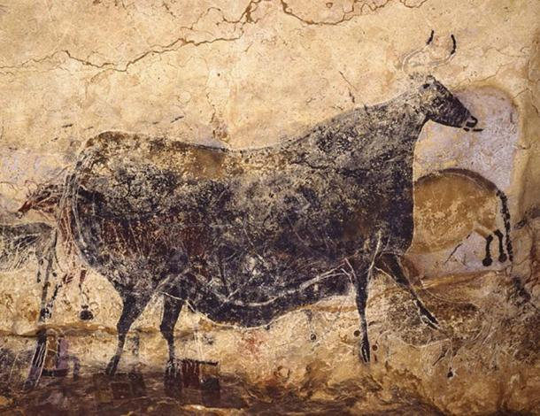 Lascaux Cave Art: Great Black Cow
