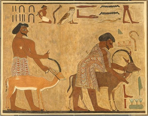 Leaders of the Aamu of Shu as depicted on the walls of the tomb of ruler of the Oryx Nome, Khnumhotep II.