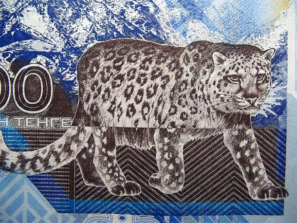 The Snow Leopard is the national animal of Kazakhstan where the Silk Road cat was found (The National Bank of Kazakhstan / Public domain)
