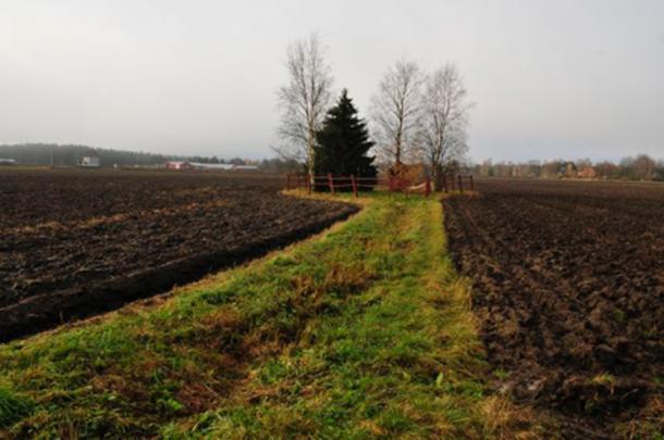 Levänluhta Spring area, in Isokyrö. Vesa Laulumaa 2012 (Fair Use)