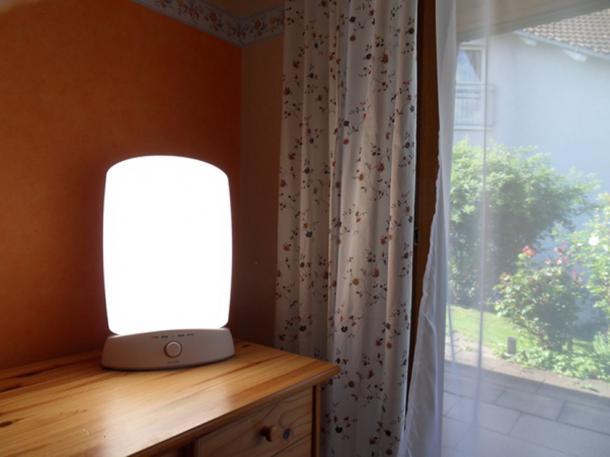 Light therapy lamp. (Slllu / Public Domain)
