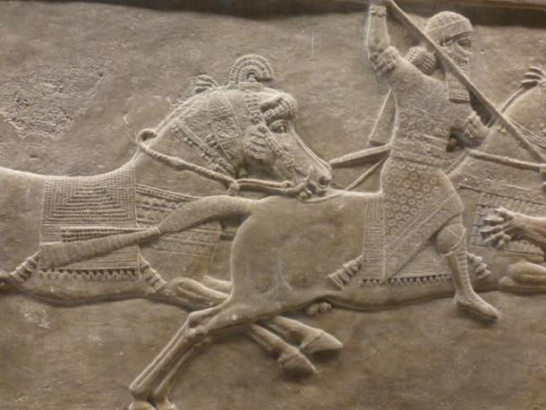 Lion Hunt relief from Ashurbanipal's Palace at Nineveh.