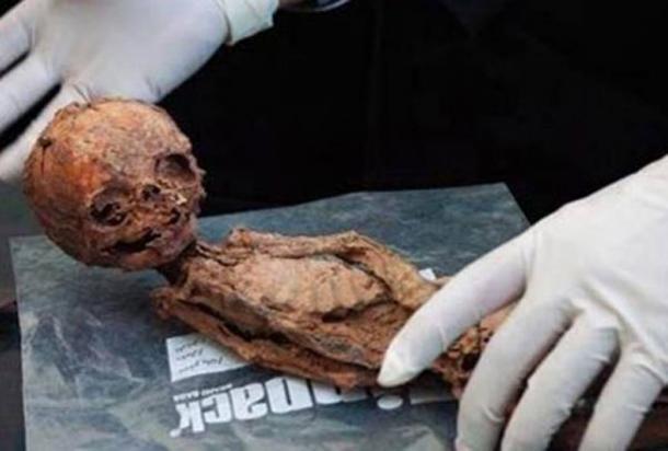 La pequeña momia encontrada en 2005. (PressTV)