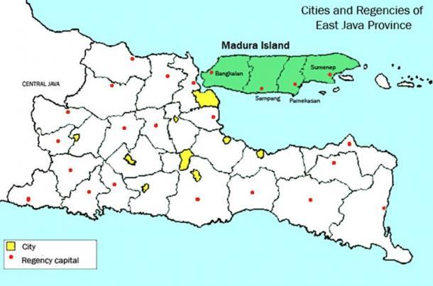 Location of Madura island in East Java, Indonesia.