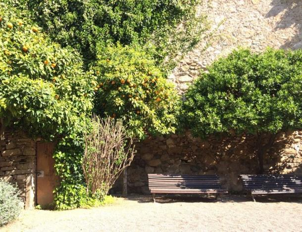 Lush greenery and fruit-laden trees hug the medieval walls of the garden.  (©Elyn Aviva)