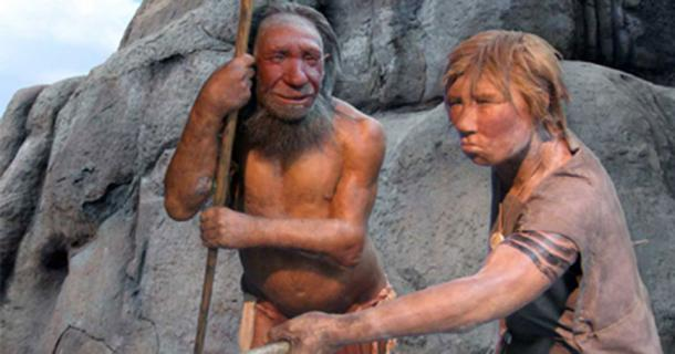 Male and female Homo neanderthalensis in the Neanderthal Museum, Mettmann, Germany.