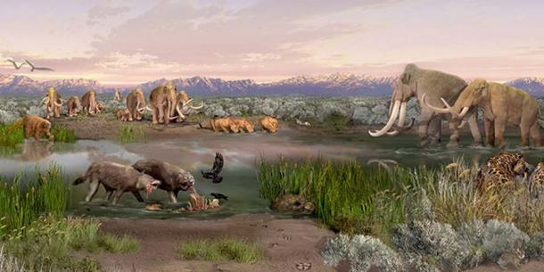 Mammoths, ground sloths and dire wolves inhabited the Tularosa Basin during the Pleistocene epoch. (NPS Photo)