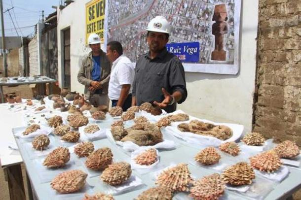 Many spondylus shells were unearthed in just one of the tombs.