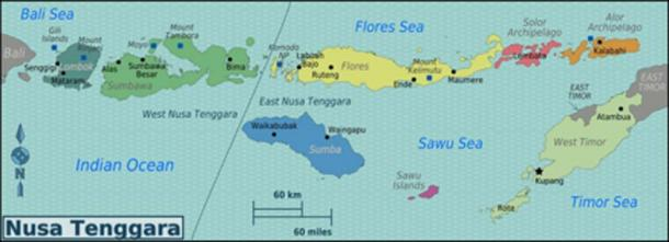 Map of Nusa Tenggara, Indonesia – Alor, where the skulls were discovered, is on the right side of the map. (OrgeBot / CC BY-SA 3.0)