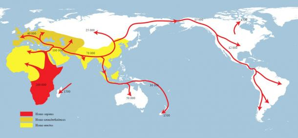 Map of early human migrations. Homo sapiens (red), Neanderthals (yellow-green), early hominids (yellow).