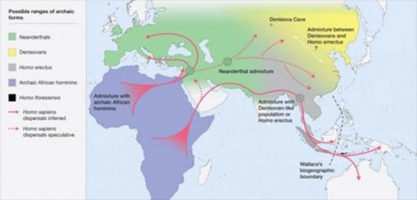Map of the potential distribution of archaic hominins, including H. erectus, H. floresiensis, H. neanderthalenesis, Denisovans and archaic African hominins, in the Old World at the time of the evolution and dispersal of H. sapiens between approximately 300 and 60 thousand years ago. (Roberts and Stewart. 2018.)