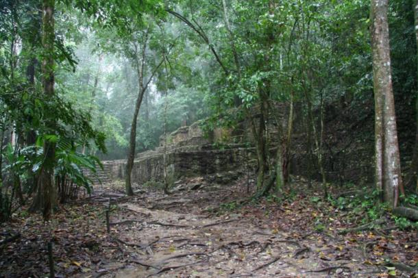 Maya ruins in the tropical jungle. (Wikimedia Commons) The latest study analyzed the behaviour of the Maya and its impacts on climate, vegetation, hydrology, rocks and soil from 3,000 to 1,000 years ago.