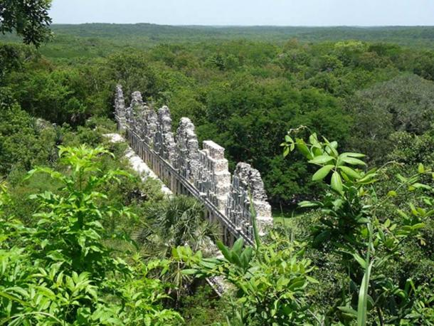 Maya ruins surrounded by lush green vegetation of the current climate