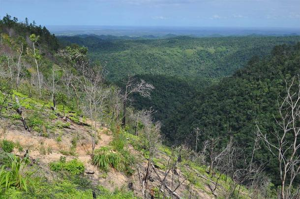 Maya Mountains, Belize, where the field work for the maize study was conducted. (Pgbk1987 / CC BY-SA 2.0)