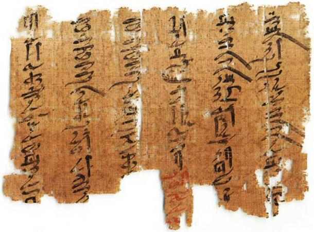 The Medical Papyri.