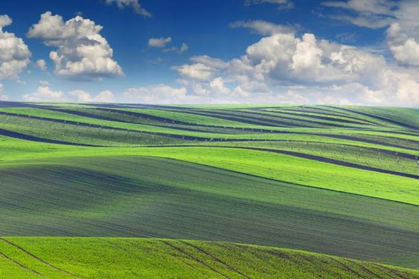 In Medieval strip farming, farmers worked in an open field system, where there were no barriers, walls or hedgerows between the farmers holdings. (Taiga / Fotolia)